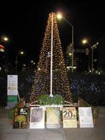 新潟駅南シンボルツリー